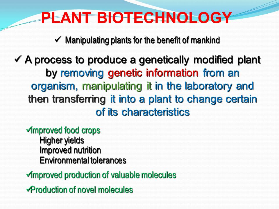 It chiefly involves the introduction of foreign genes into economically important plant species, resulting in crop improvement and the production of novel products in plants.