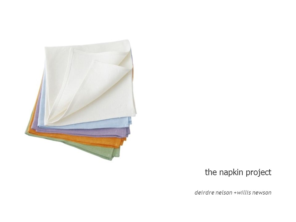 the napkin project deirdre nelson +willis newson
