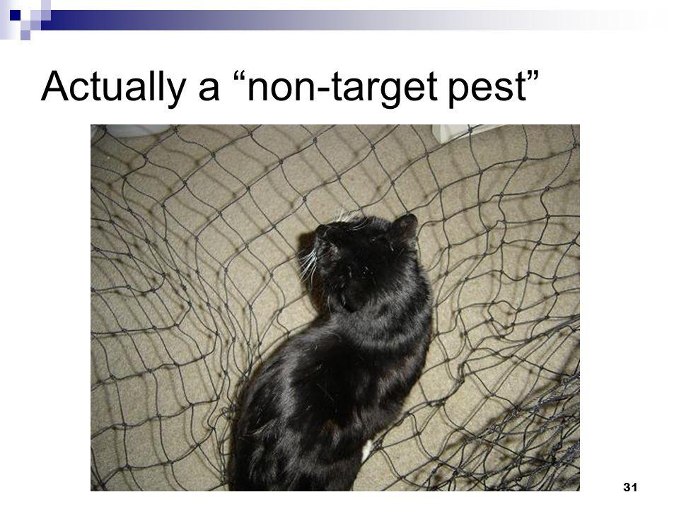31 Actually a non-target pest