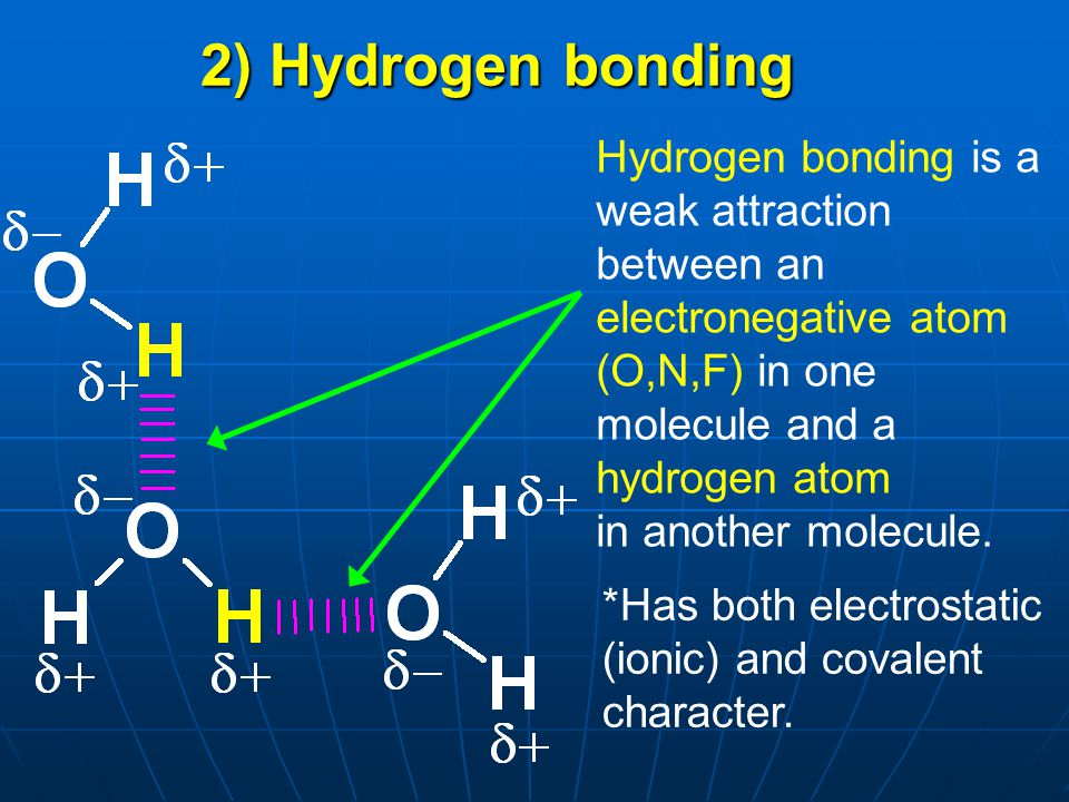 Hydrogen bonding is a weak attraction between an electronegative atom (O,N,F) in one molecule and a hydrogen atom in another molecule. 2) Hydrogen bon