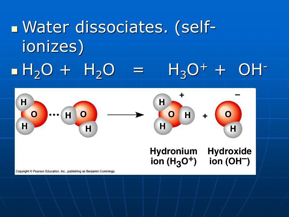 Water dissociates.(self- ionizes) Water dissociates.