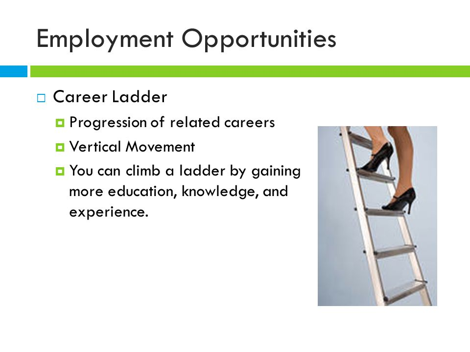 Employment Opportunities  Career Ladder  Progression of related careers  Vertical Movement  You can climb a ladder by gaining more education, knowledge, and experience.