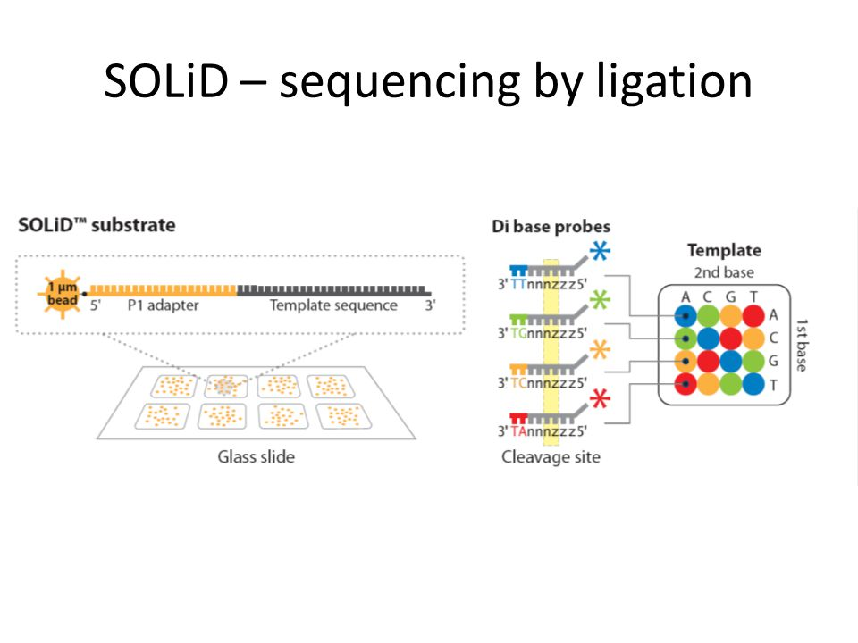 SOLiD – sequencing by ligation
