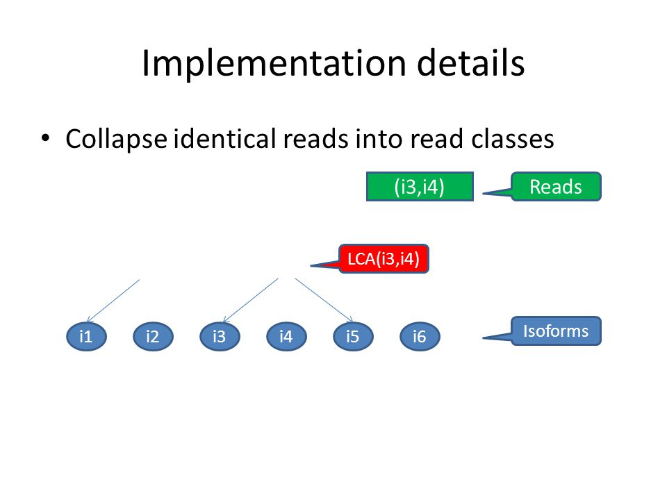 Implementation details Collapse identical reads into read classes i1 Isoforms i2i3i4i5i6 Reads (i1,i2)(i3,i4)(i3,i5)(i3,i4) LCA(i3,i4)