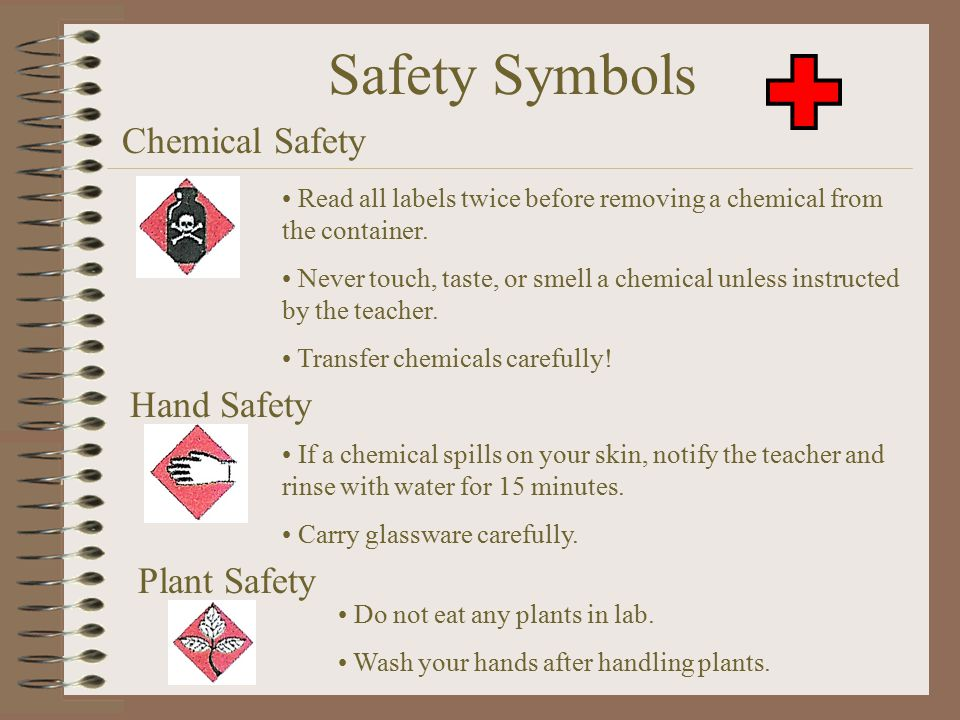 Safety Symbols Animal Safety Only handle living organisms with teacher permission. Always treat living organisms humanely. Wash your hands after handl