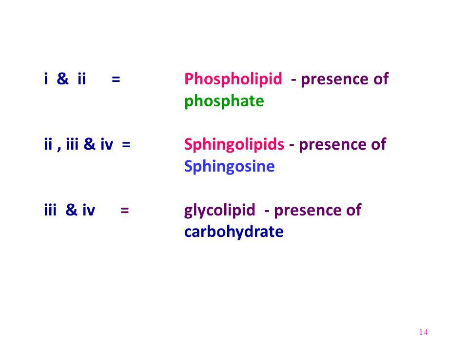 14 i & ii = Phospholipid - presence of phosphate ii, iii & iv = Sphingolipids - presence of Sphingosine iii & iv = glycolipid - presence of carbohydra