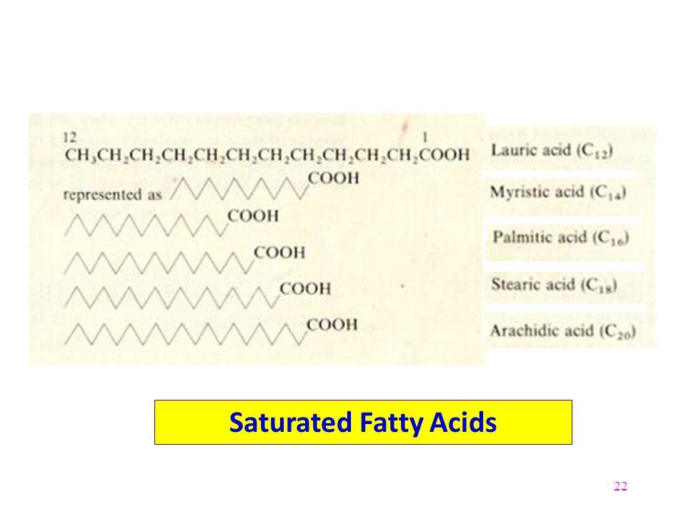 22 Saturated Fatty Acids