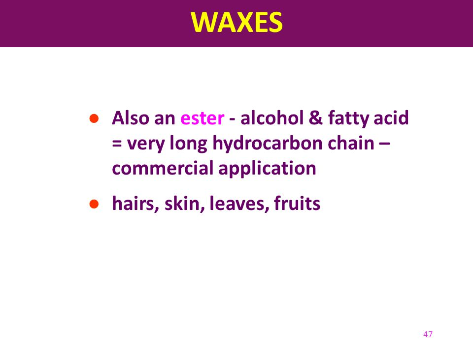 47 ● Also an ester - alcohol & fatty acid = very long hydrocarbon chain – commercial application ● hairs, skin, leaves, fruits WAXES