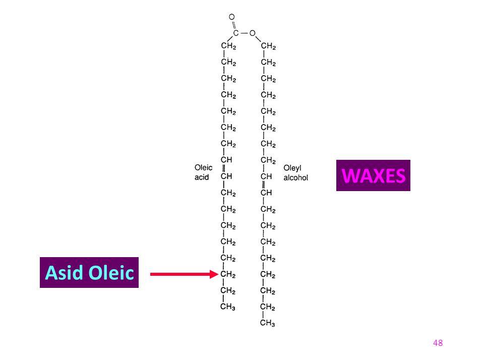 48 Asid Oleic WAXES