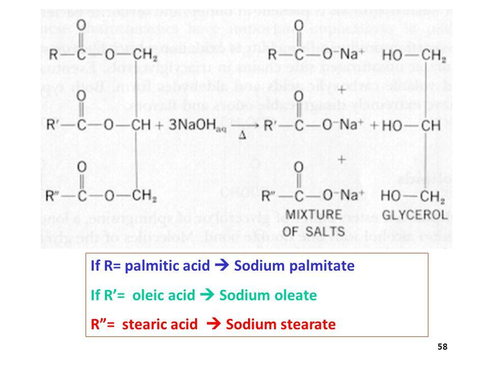 """58 If R= palmitic acid  Sodium palmitate If R'= oleic acid  Sodium oleate R""""= stearic acid  Sodium stearate"""
