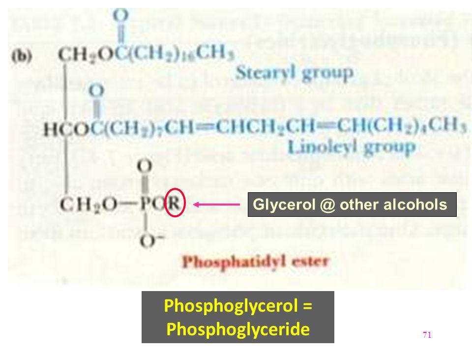 71 Phosphoglycerol = Phosphoglyceride Glycerol @ other alcohols