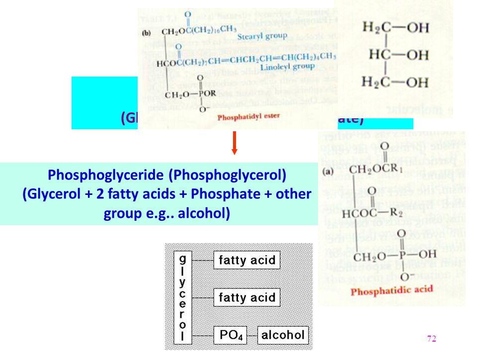 72 Glycerol (Trihydroxyglycerol) Phosphatidic acid (Glycerol + 2 fatty acids + Phosphate) Phosphoglyceride (Phosphoglycerol) (Glycerol + 2 fatty acids