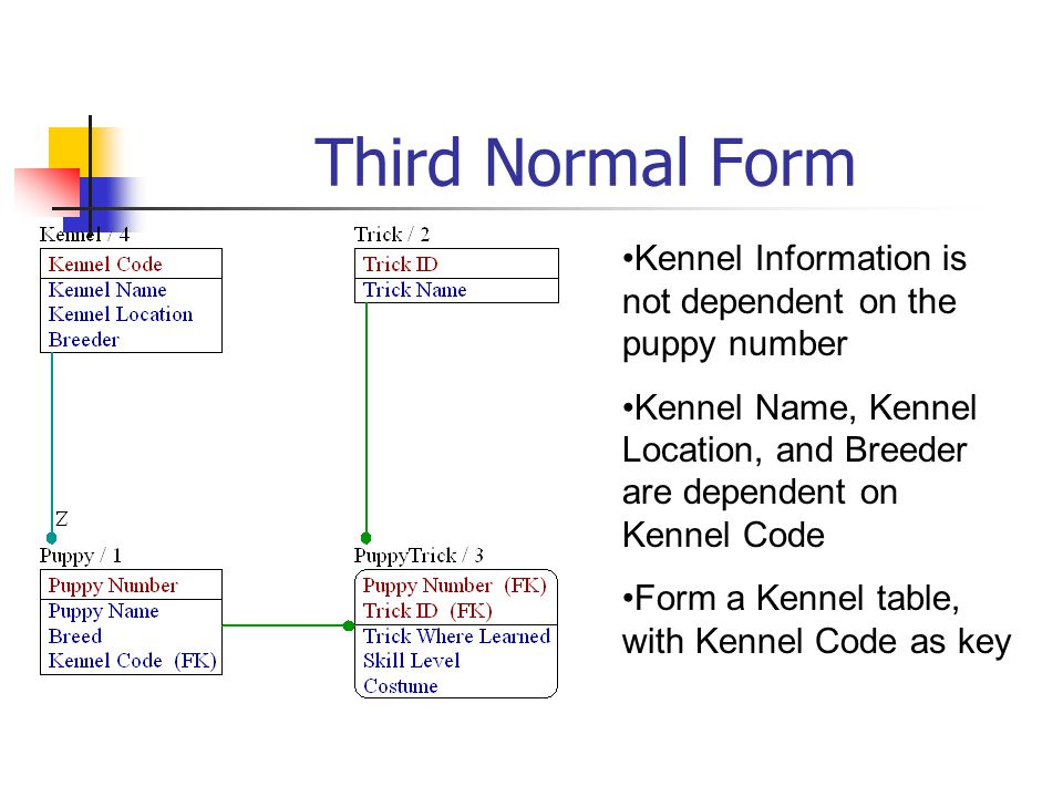 Third Normal Form Kennel Information is not dependent on the puppy number Kennel Name, Kennel Location, and Breeder are dependent on Kennel Code Form