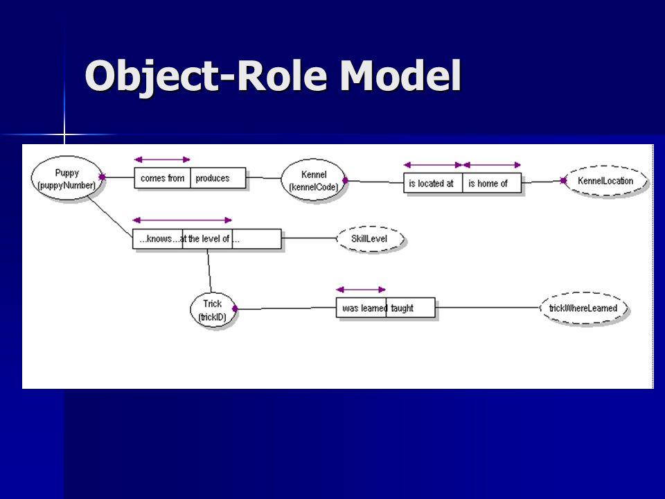 Object-Role Model