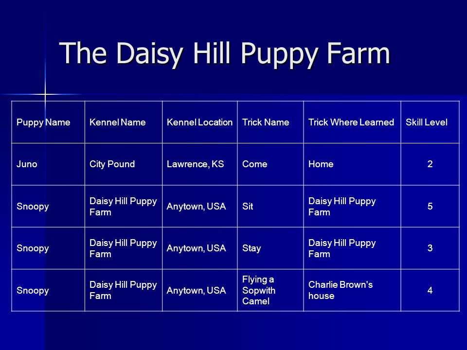 The Daisy Hill Puppy Farm Puppy NameKennel NameKennel LocationTrick NameTrick Where LearnedSkill Level JunoCity PoundLawrence, KSComeHome2 Snoopy Dais