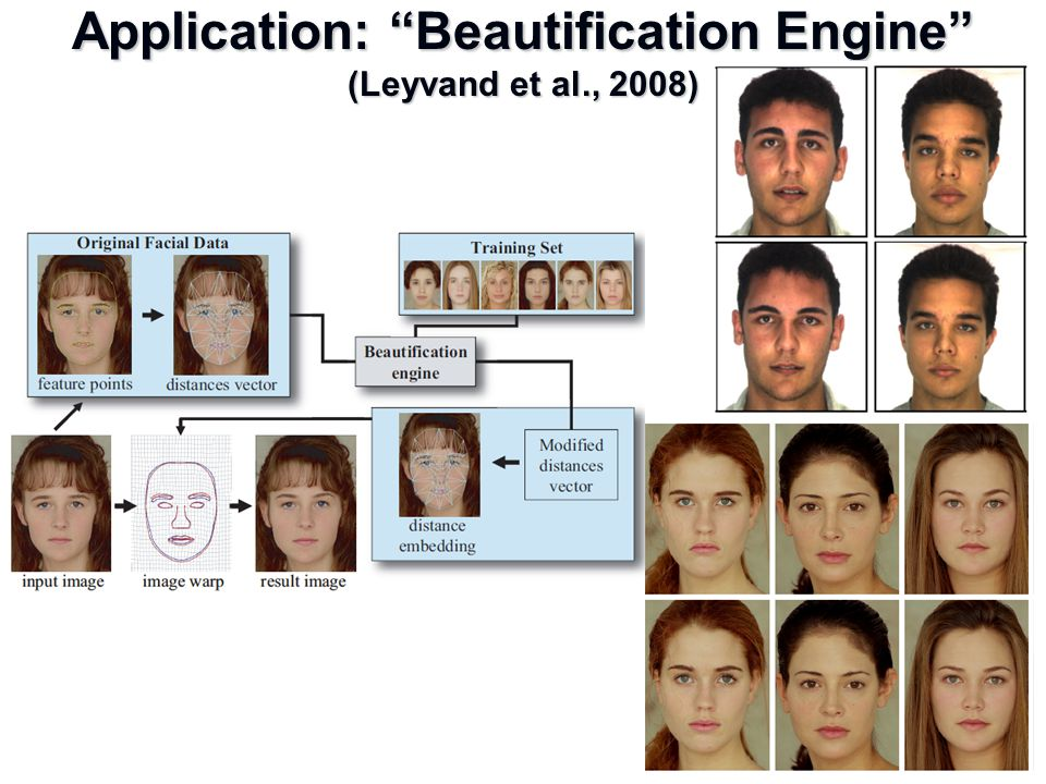 Application: Beautification Engine (Leyvand et al., 2008)
