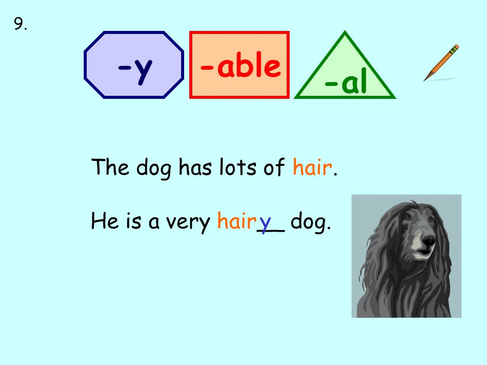-able -al -y The dog has lots of hair. He is a very hair__ dog.y 9.