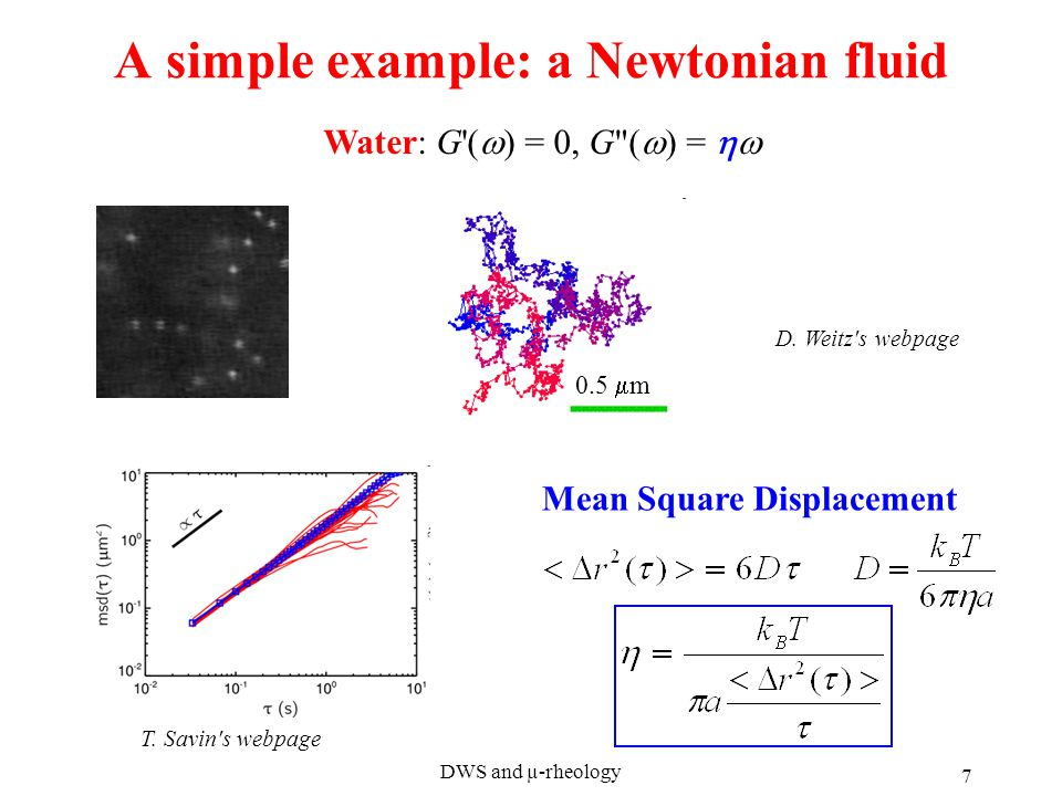 DWS and µ-rheology 7 A simple example: a Newtonian fluid Mean Square Displacement Water: G (  ) = 0, G (  ) =  D.