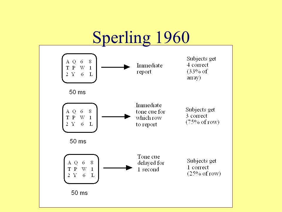 Sperling 1960