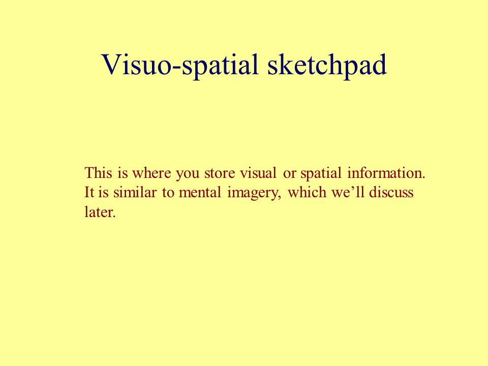 Visuo-spatial sketchpad This is where you store visual or spatial information.