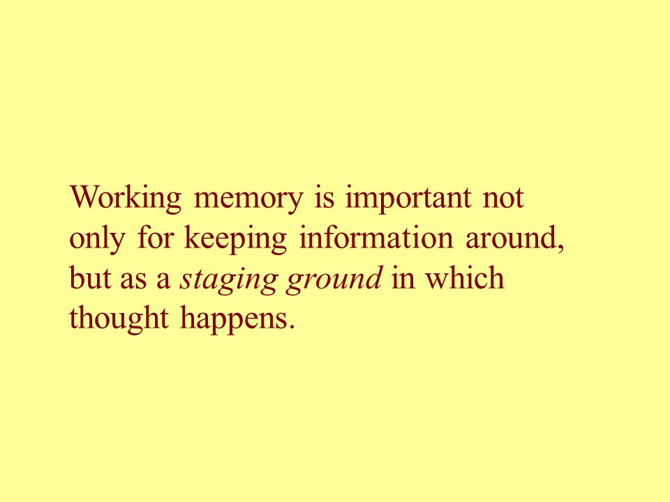 Working memory is important not only for keeping information around, but as a staging ground in which thought happens.