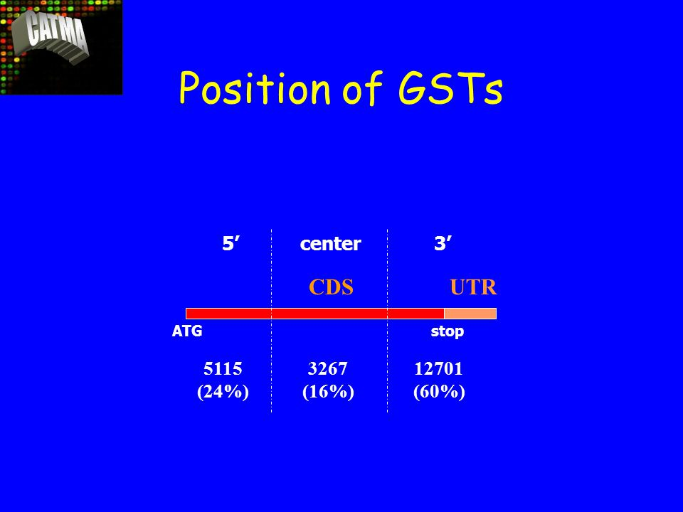 Position of GSTs ATGstop 5' center3' 3267 (16%) 5115 (24%) 12701 (60%) UTRCDS
