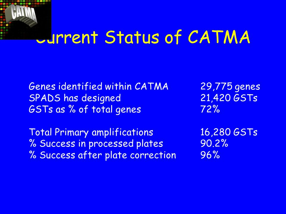 Current Status of CATMA Genes identified within CATMA29,775 genes SPADS has designed21,420 GSTs GSTs as % of total genes72% Total Primary amplifications16,280 GSTs % Success in processed plates90.2% % Success after plate correction96%
