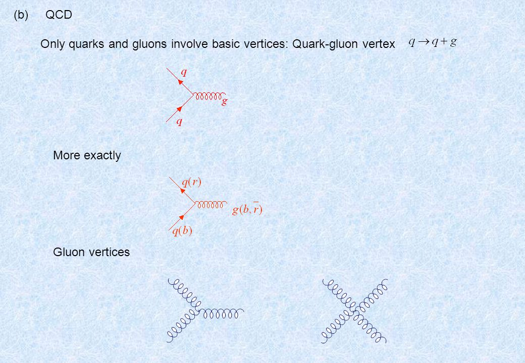 (b) QCD Only quarks and gluons involve basic vertices: Quark-gluon vertex More exactly Gluon vertices