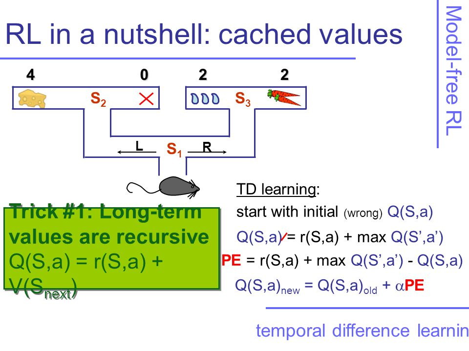 Trick #1: Long-term values are recursive Q(S,a) = r(S,a) + V(S next ) Trick #1: Long-term values are recursive Q(S,a) = r(S,a) + V(S next ) RL in a nutshell: cached values Model-free RL temporal difference learning Q(S,a) = r(S,a) + max Q(S',a') TD learning: start with initial (wrong) Q(S,a) PE = r(S,a) + max Q(S',a') - Q(S,a) Q(S,a) new = Q(S,a) old +  PE S1S1 S3S3 S2S2 4022 R L