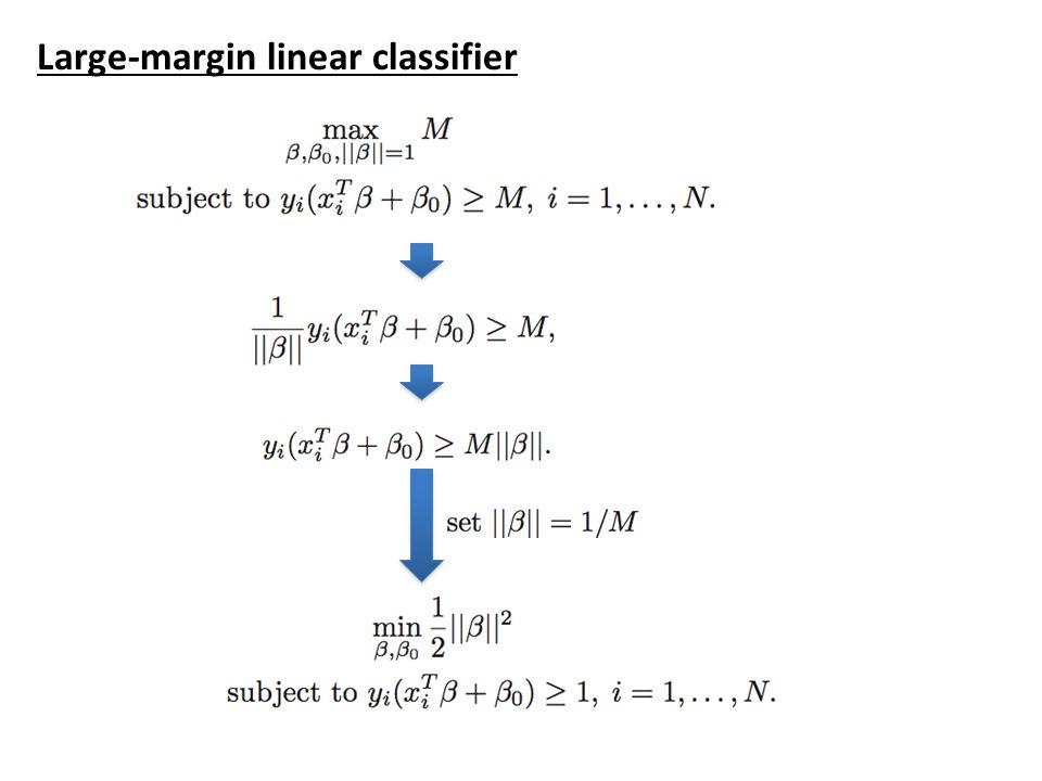 Large-margin linear classifier