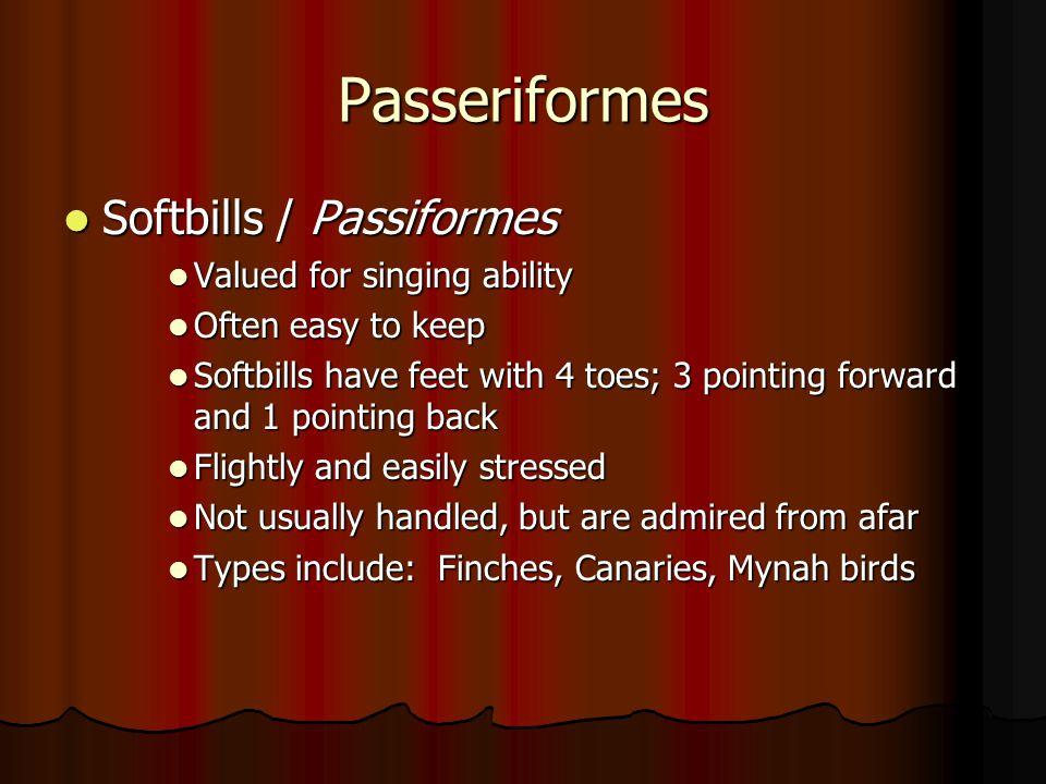 Passeriformes Softbills / Passiformes Softbills / Passiformes Valued for singing ability Valued for singing ability Often easy to keep Often easy to k