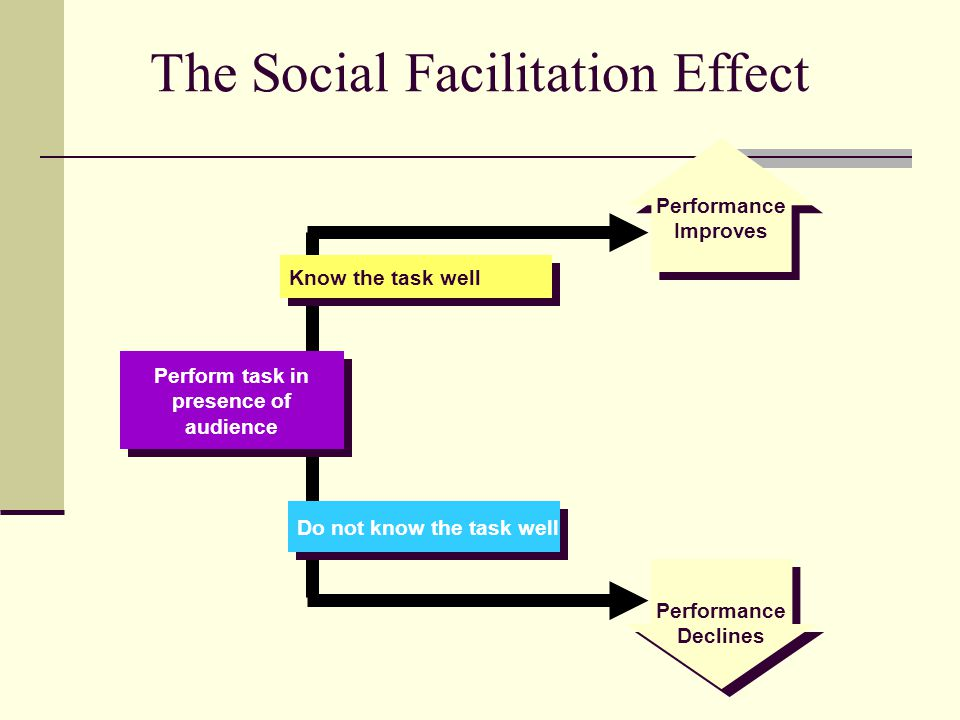 The Social Facilitation Effect Perform task in presence of audience Perform task in presence of audience Do not know the task well Know the task well