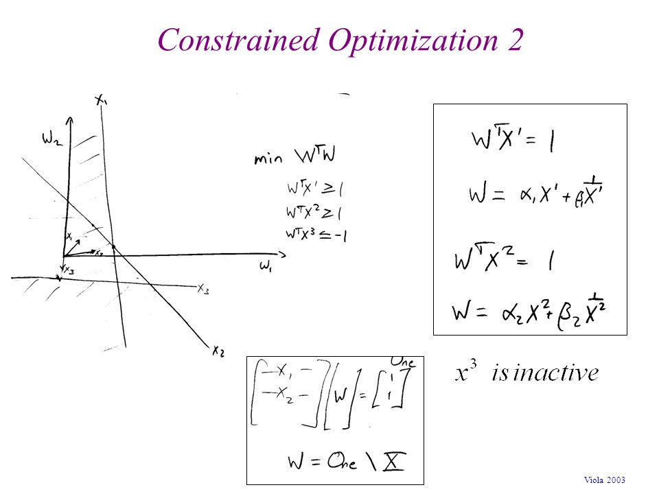 Viola 2003 Constrained Optimization 2