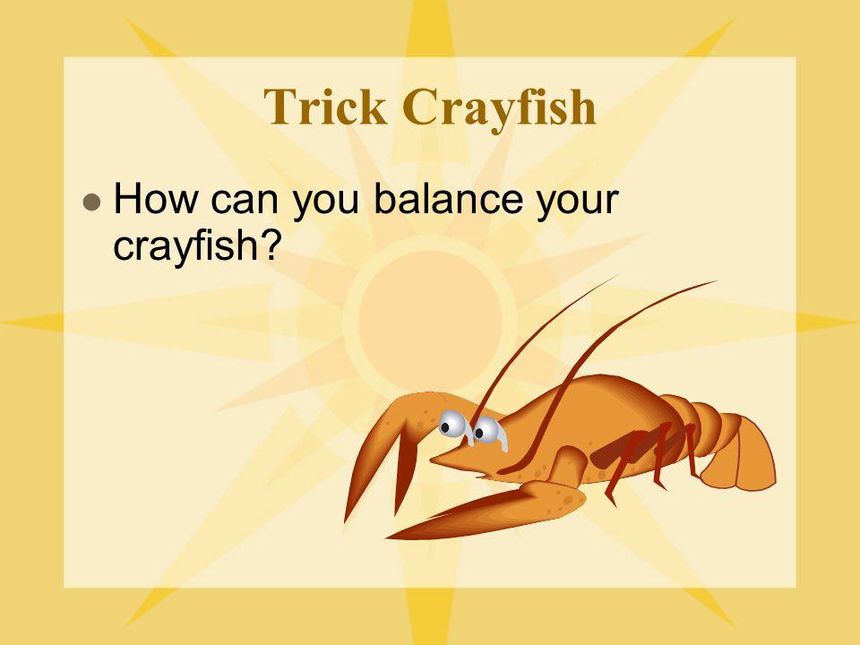 Trick Crayfish How can you balance your crayfish?