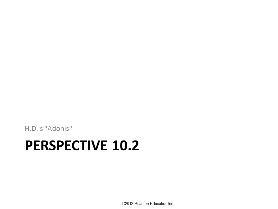 PERSPECTIVE 10.2 H.D.'s