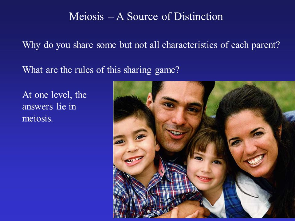 Meiosis – A Source of Distinction Why do you share some but not all characteristics of each parent? What are the rules of this sharing game? At one le