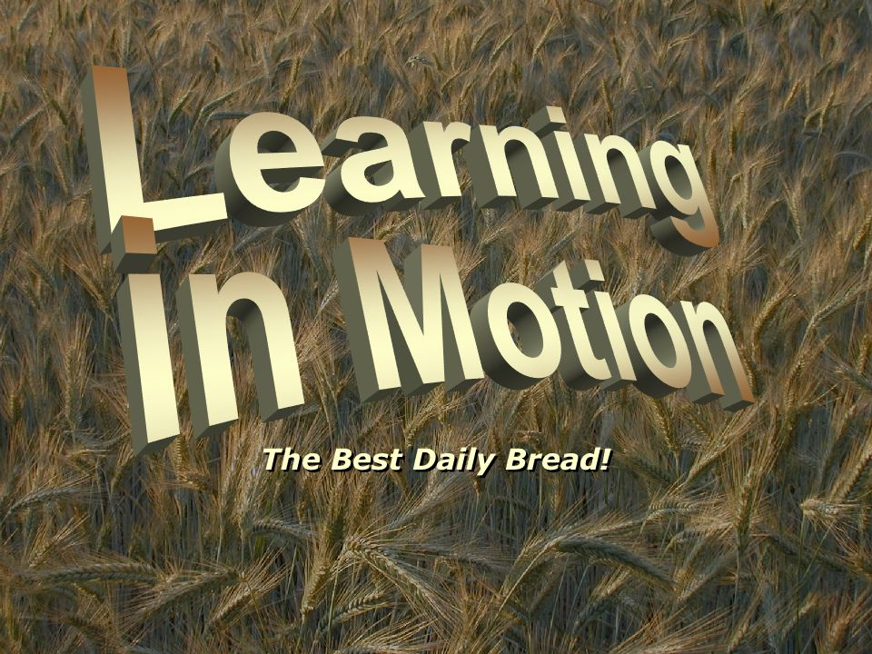 The Best Daily Bread!
