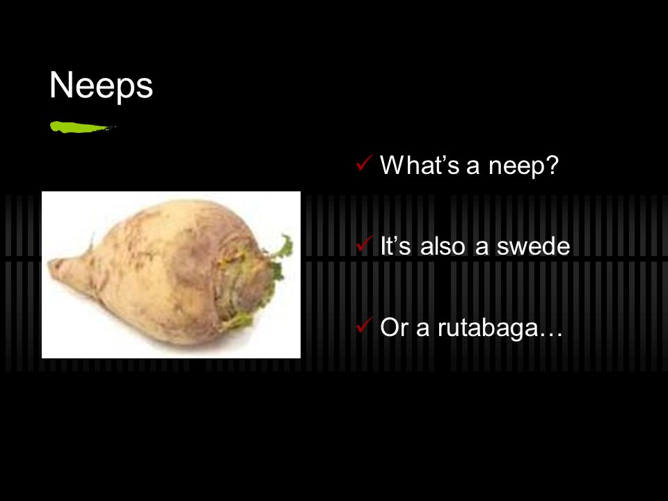 Neeps What's a neep? It's also a swede Or a rutabaga…