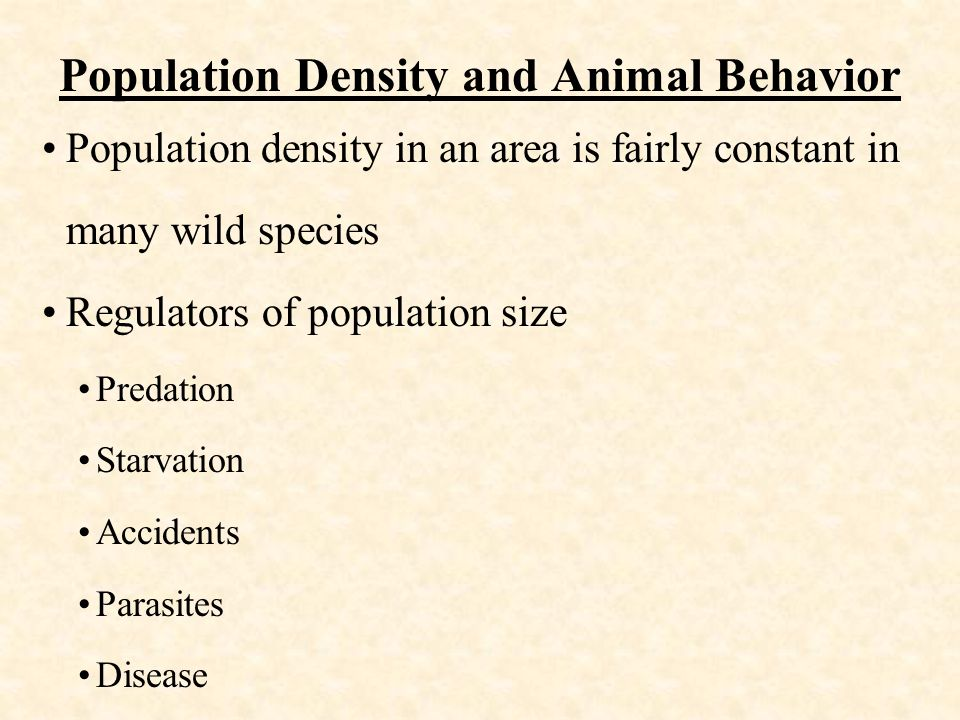 Population Density and Animal Behavior Population density in an area is fairly constant in many wild species Regulators of population size Predation Starvation Accidents Parasites Disease