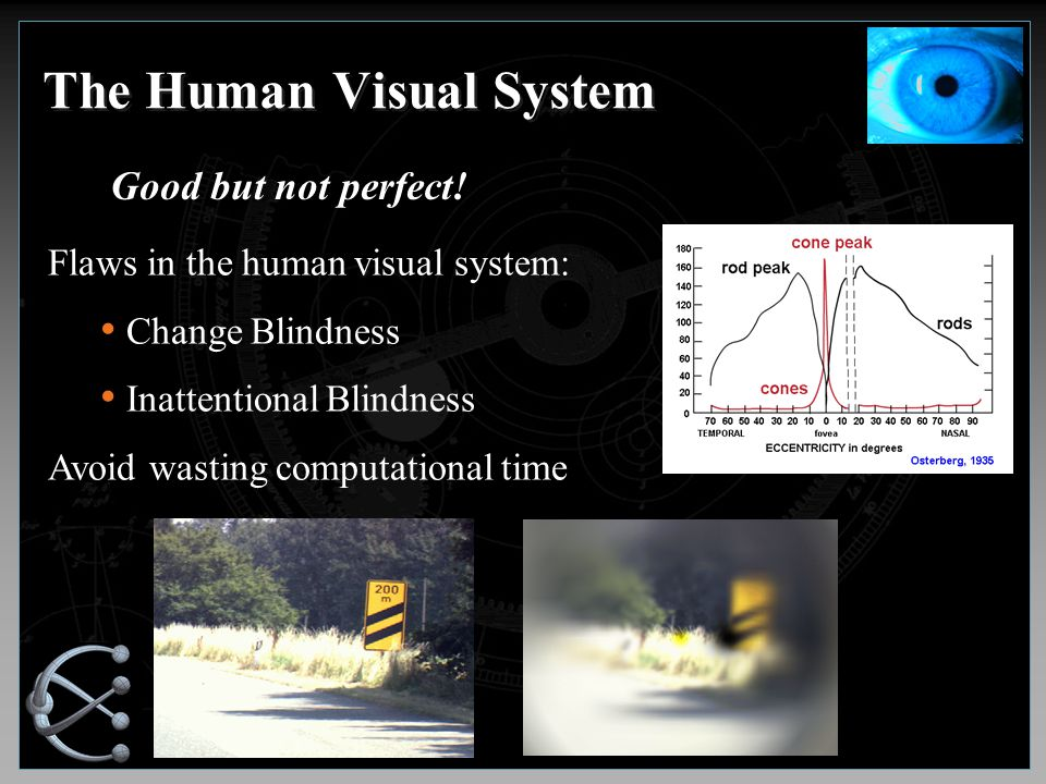 The Human Visual System Good but not perfect.