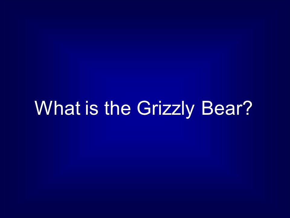 What is the Grizzly Bear