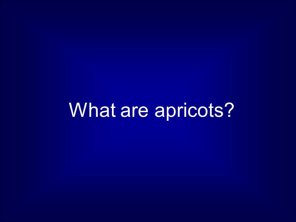 What are apricots