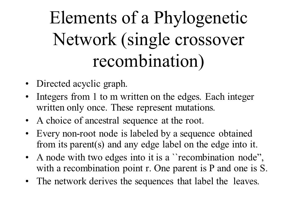 Elements of a Phylogenetic Network (single crossover recombination) Directed acyclic graph.