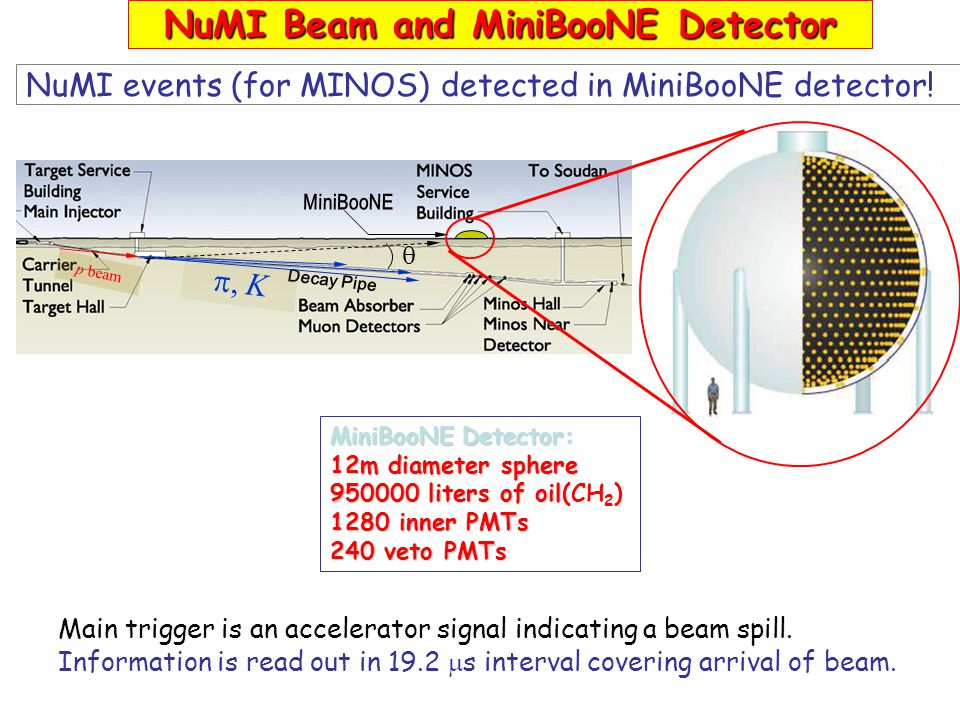 NuMI Beam and MiniBooNE Detector NuMI events (for MINOS) detected in MiniBooNE detector.