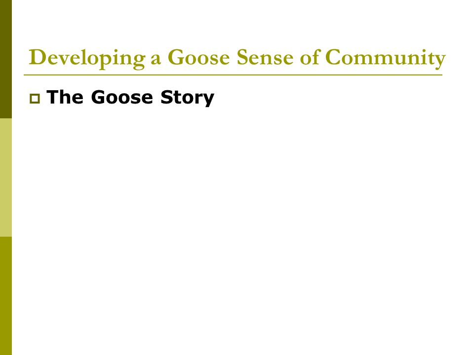 Developing a Goose Sense of Community  The Goose Story