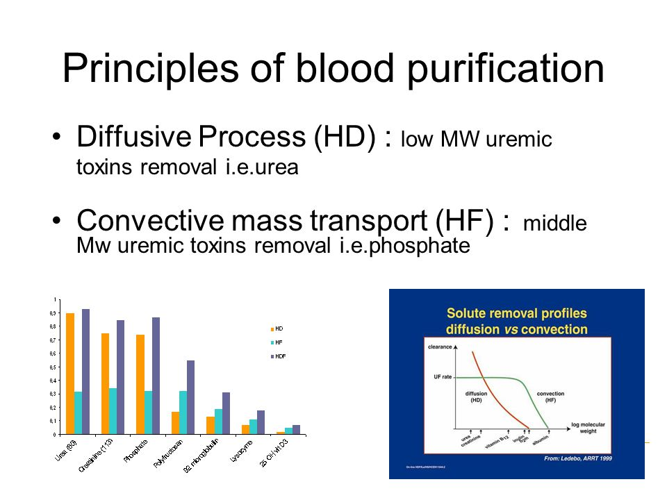 Principles of blood purification Diffusive Process (HD) : low MW uremic toxins removal i.e.urea Convective mass transport (HF) : middle Mw uremic toxins removal i.e.phosphate