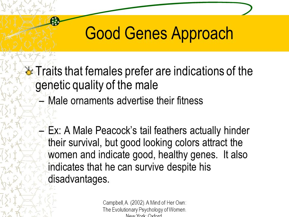 Campbell, A. (2002). A Mind of Her Own: The Evolutionary Psychology of Women. New York: Oxford. Good Genes Approach Traits that females prefer are ind