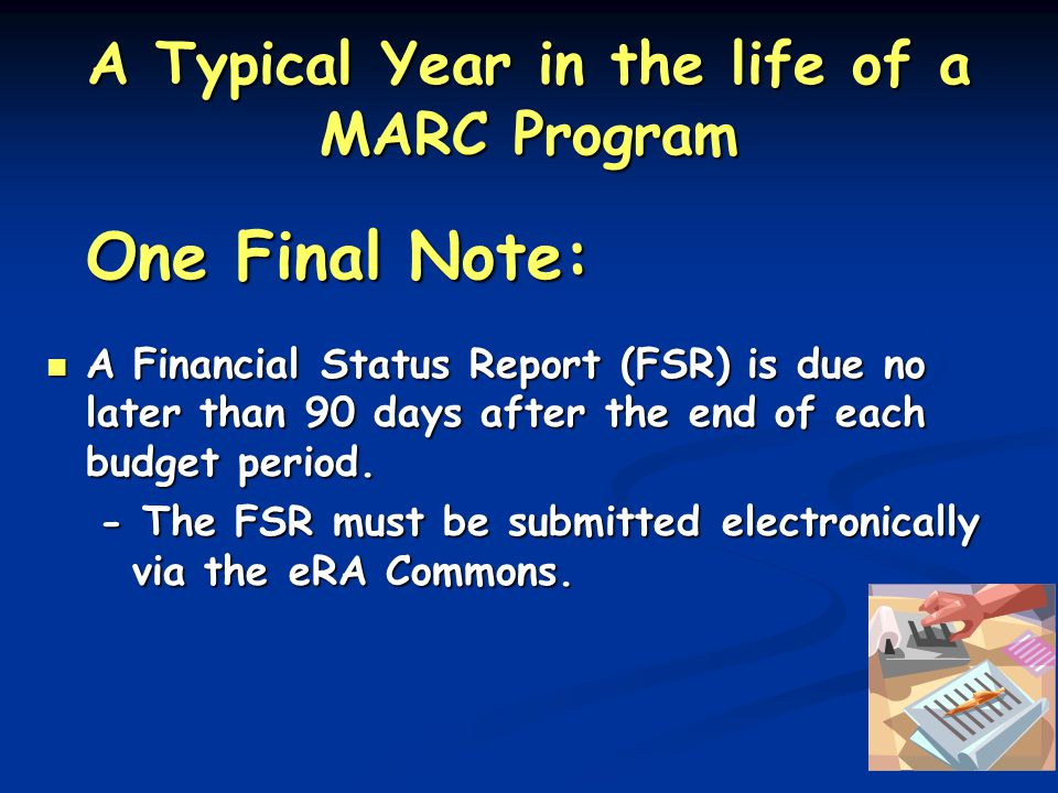 A Typical Year in the life of a MARC Program One Final Note: A Financial Status Report (FSR) is due no later than 90 days after the end of each budget period.