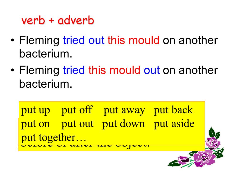 verb + adverb Fleming found the mould had killed the cells of the bacteria and _______ on another bacterium.