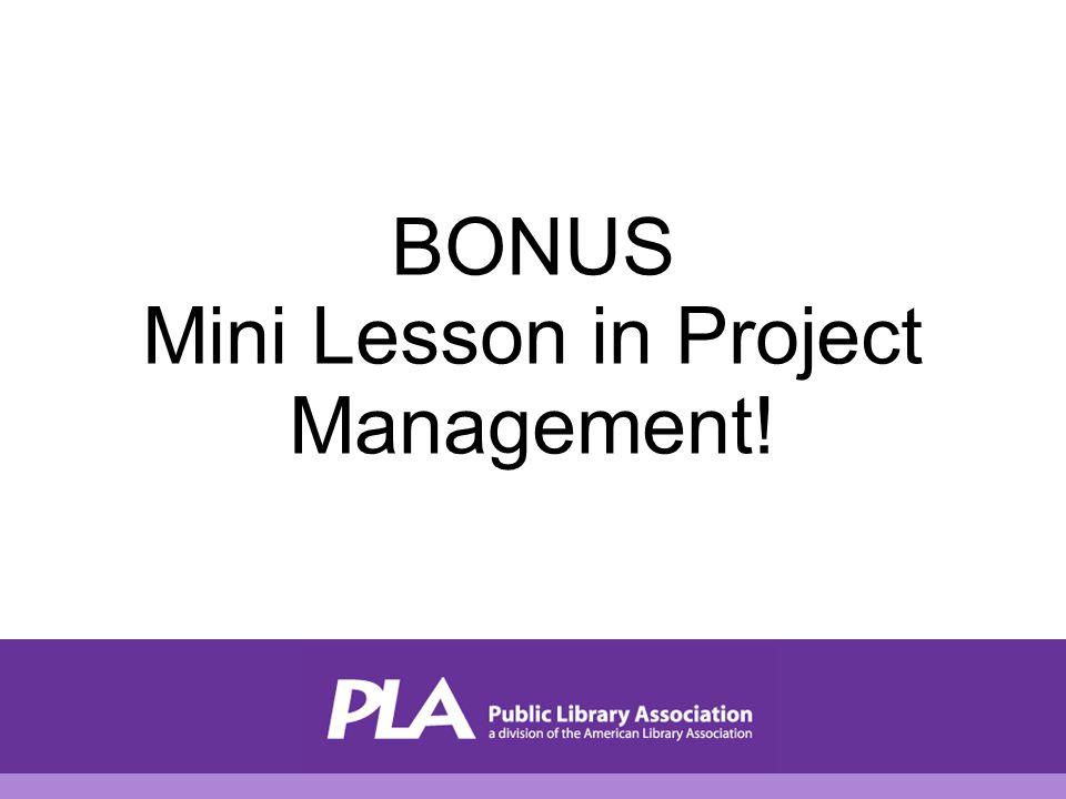 BONUS Mini Lesson in Project Management!